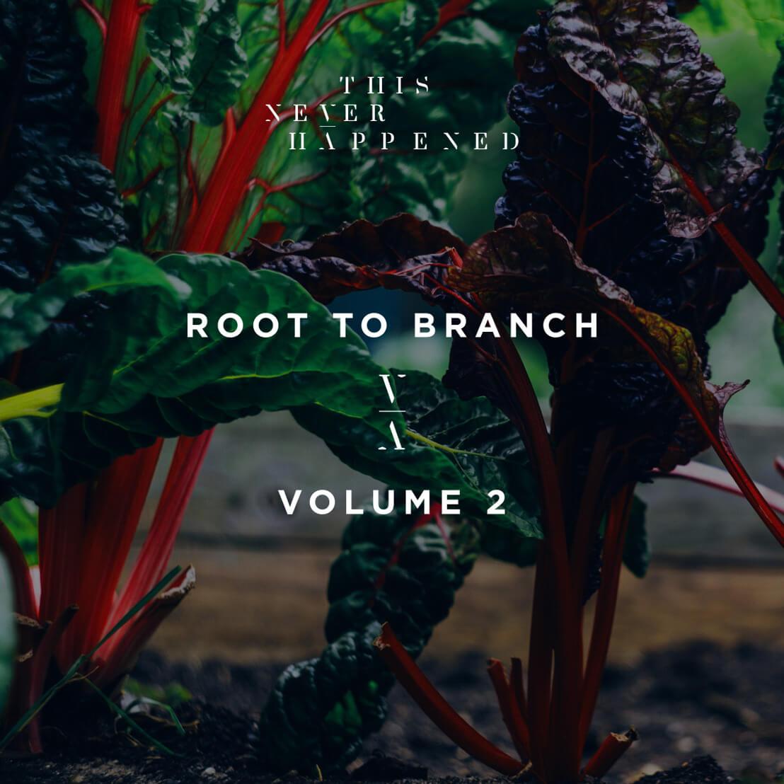 Lane 8 nos descubre nuevos talentos en el Root to Branch, Vol. 2